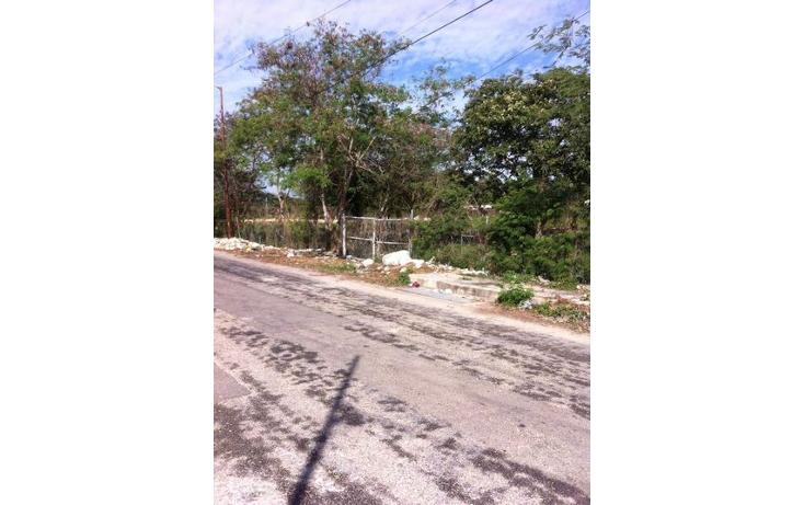 Foto de terreno habitacional en venta en  , juan pablo ii, mérida, yucatán, 1611732 No. 06