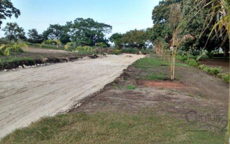 Foto de terreno habitacional en venta en juana moza, túxpam de rodríguez cano centro, tuxpan, veracruz, 1720892 no 08