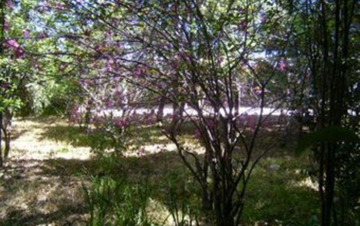 Foto de terreno habitacional en venta en, juárez los chirinos, ocoyoacac, estado de méxico, 1057353 no 06
