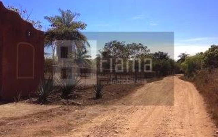 Foto de rancho en venta en  , jumatan, tepic, nayarit, 1107783 No. 02