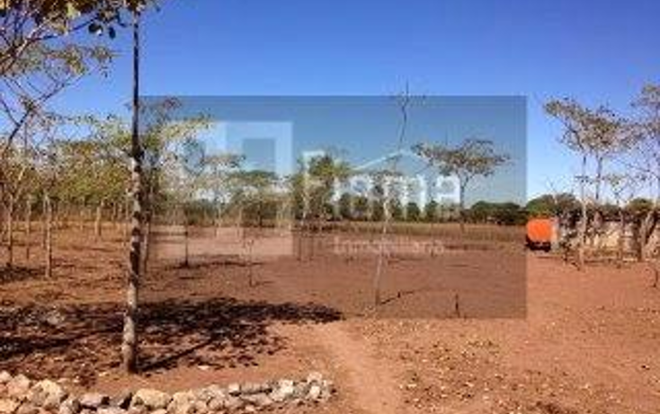 Foto de rancho en venta en  , jumatan, tepic, nayarit, 1107783 No. 08