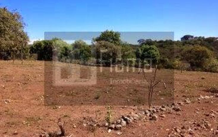 Foto de rancho en venta en  , jumatan, tepic, nayarit, 1107783 No. 12