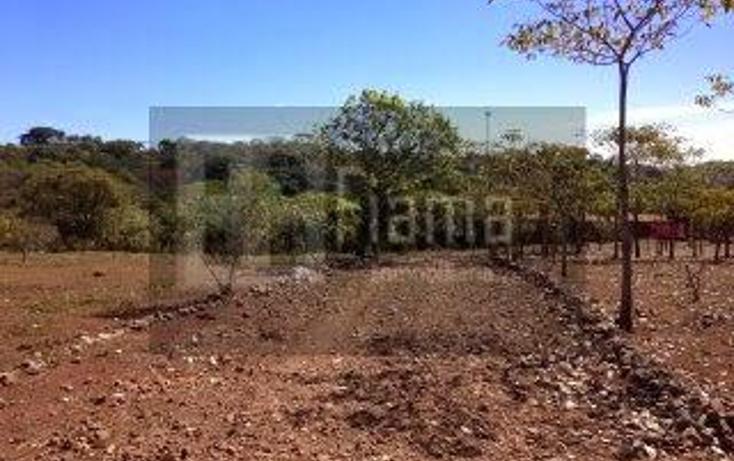 Foto de rancho en venta en  , jumatan, tepic, nayarit, 1107783 No. 13
