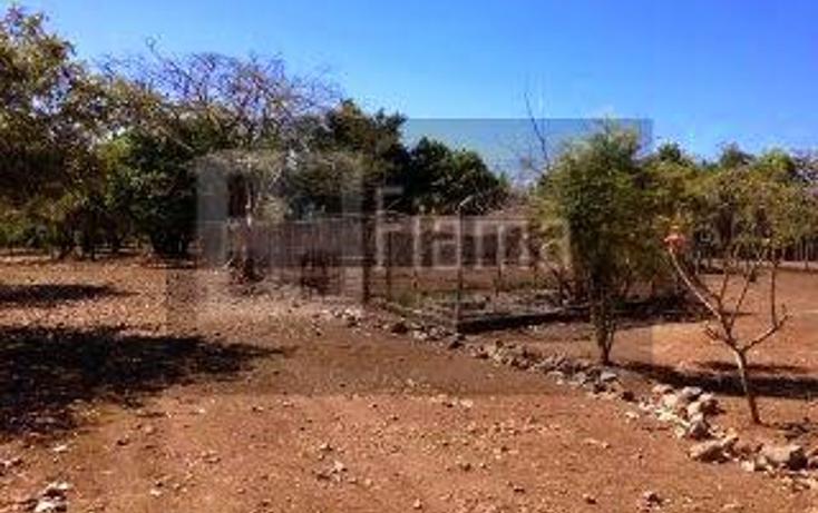 Foto de rancho en venta en  , jumatan, tepic, nayarit, 1107783 No. 20