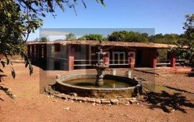 Foto de rancho en venta en  , jumatan, tepic, nayarit, 1107783 No. 21
