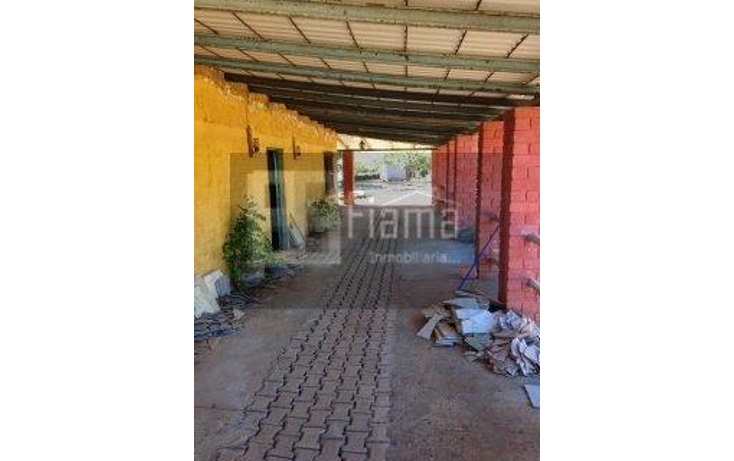 Foto de rancho en venta en  , jumatan, tepic, nayarit, 1107783 No. 32