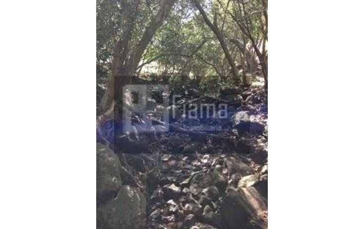 Foto de rancho en venta en  , jumatan, tepic, nayarit, 1107783 No. 57