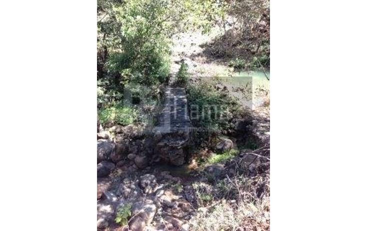 Foto de rancho en venta en  , jumatan, tepic, nayarit, 1107783 No. 61