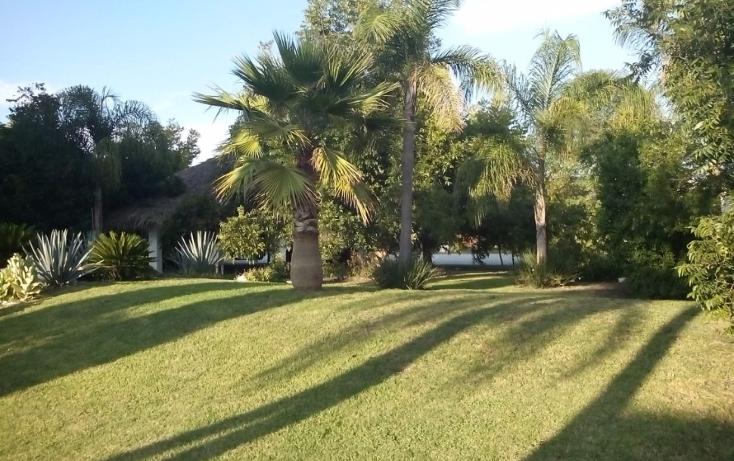 Foto de casa en venta en  , jurica, querétaro, querétaro, 1394233 No. 09