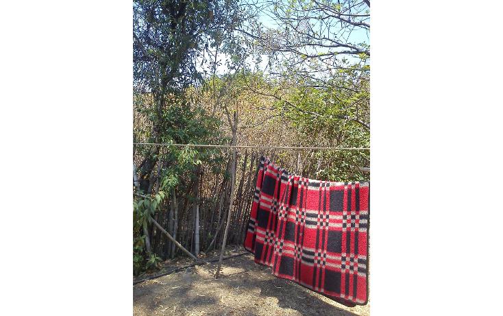 Foto de terreno habitacional en venta en  , nepantla de sor juana inés, tepetlixpa, méxico, 1986229 No. 02