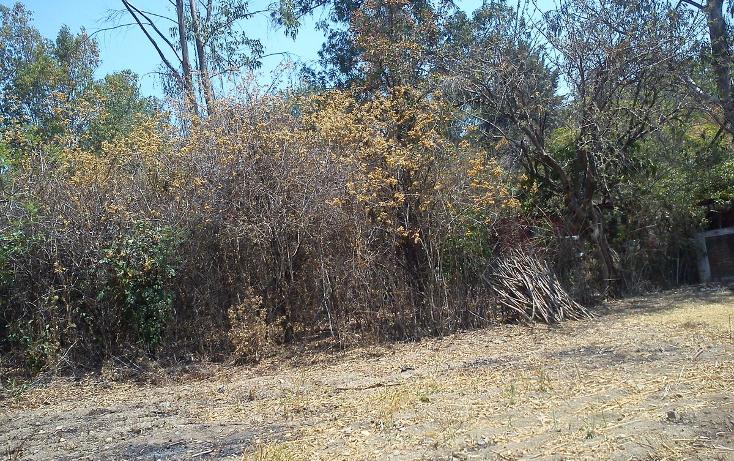Foto de terreno habitacional en venta en  , nepantla de sor juana inés, tepetlixpa, méxico, 1986229 No. 07