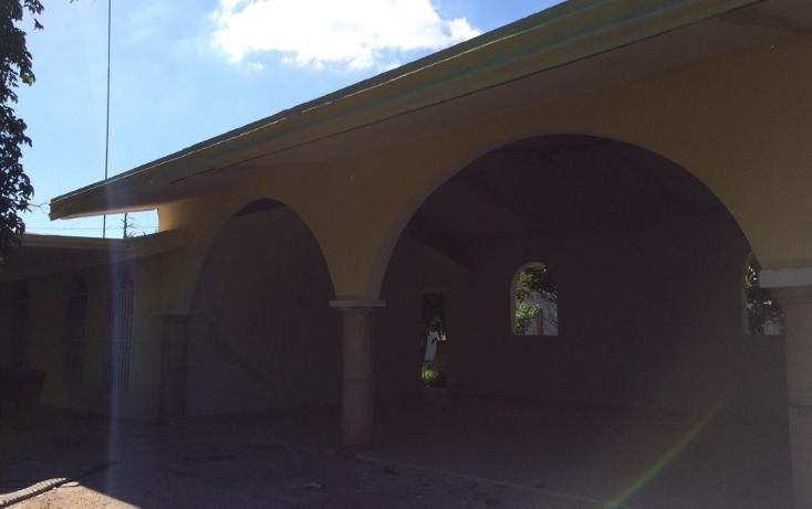Foto de rancho en venta en  , kanasin, kanasín, yucatán, 1293687 No. 02