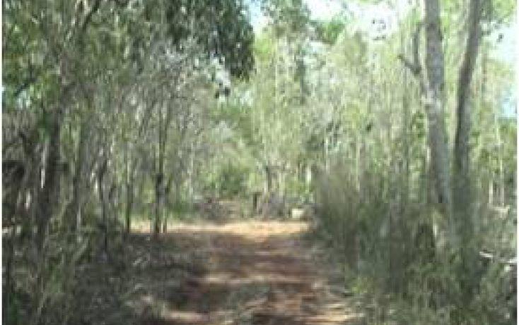Foto de terreno comercial en venta en, kaua, kaua, yucatán, 1099687 no 04