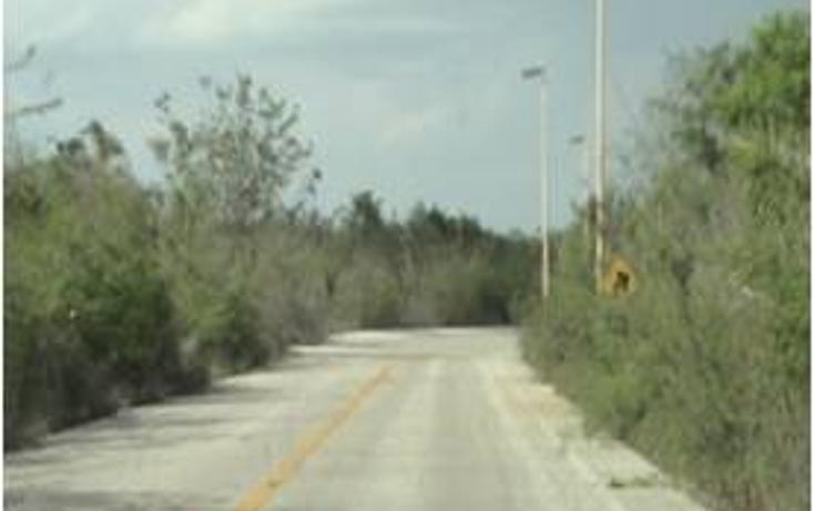 Foto de terreno comercial en venta en  , kaua, kaua, yucatán, 1099687 No. 06