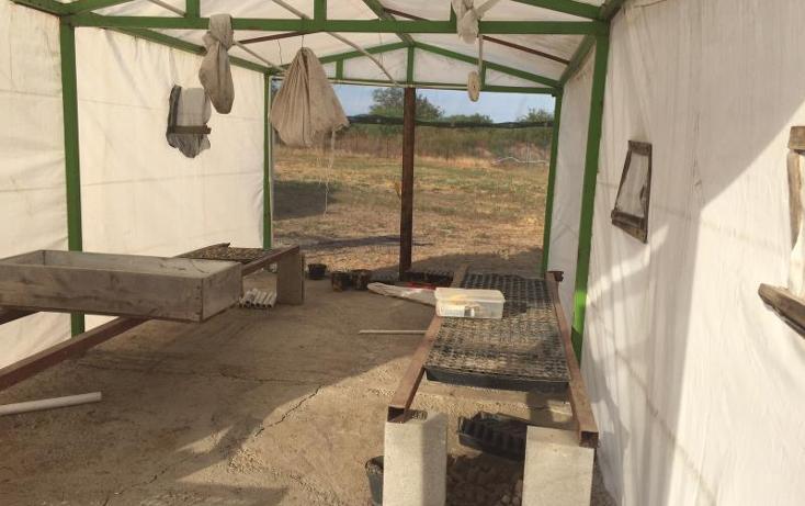 Foto de rancho en venta en  kilometro 20, el moral, piedras negras, coahuila de zaragoza, 1372329 No. 12
