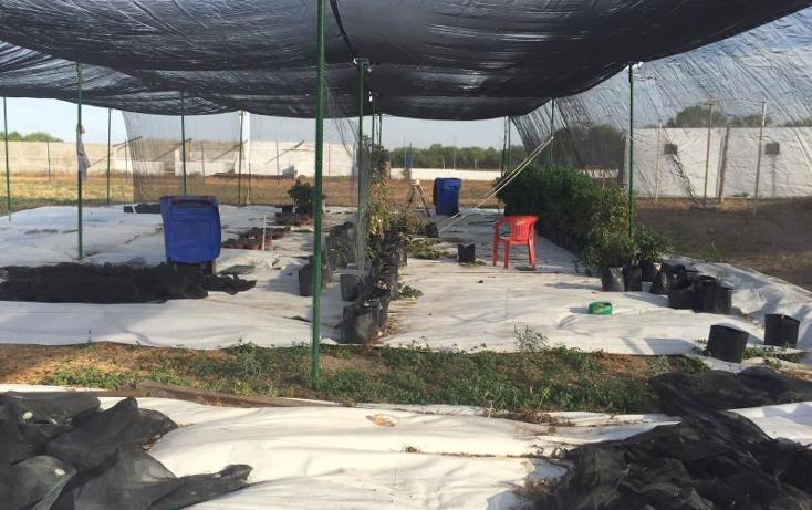 Foto de rancho en venta en  kilometro 20, el moral, piedras negras, coahuila de zaragoza, 1372329 No. 13