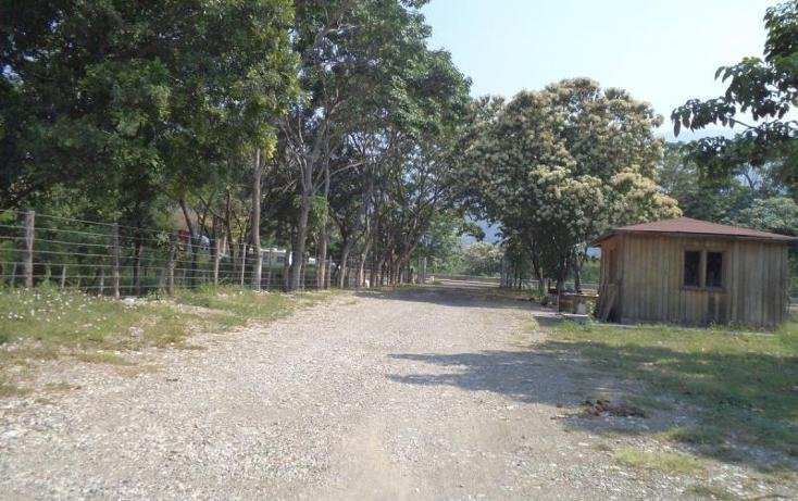 Foto de terreno industrial en venta en  kilometro 29, tecolapa, tecomán, colima, 1426235 No. 10