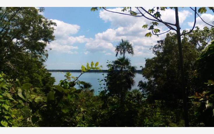 Foto de terreno comercial en venta en carretera 307 kilometro 31, centro de conservación e investigación de la vida, bacalar, quintana roo, 2713264 No. 06
