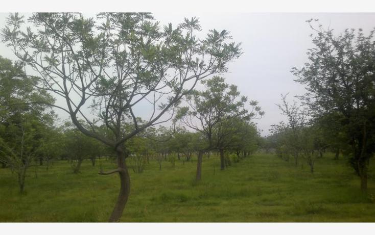 Foto de terreno comercial en venta en  kilometro 3.5, alpuyeca, xochitepec, morelos, 432902 No. 25