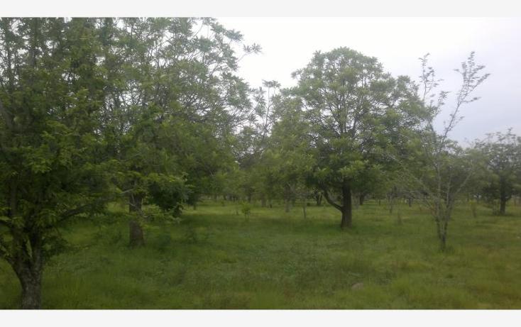 Foto de terreno comercial en venta en  kilometro 3.5, alpuyeca, xochitepec, morelos, 432902 No. 26
