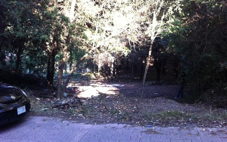 Foto de terreno habitacional en venta en kilometro 4 carretera casas quemadas - mineral del chico , bosques de san cayetano, mineral del monte, hidalgo, 1514626 No. 05