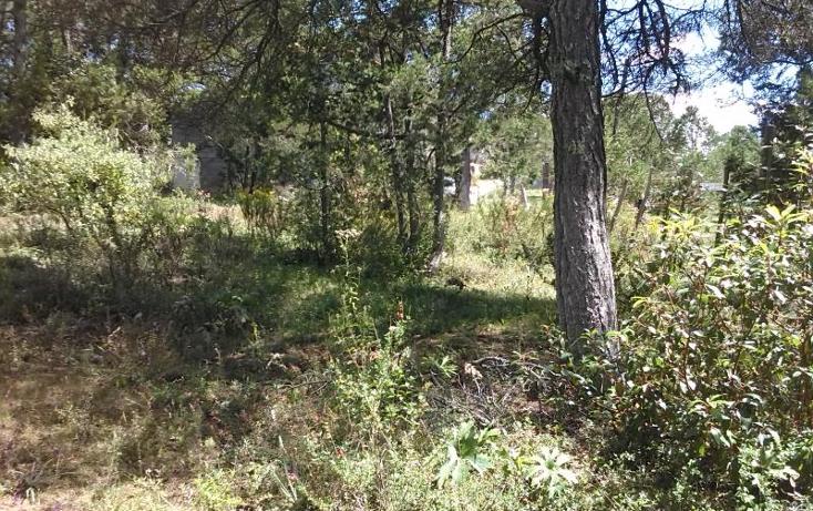 Foto de terreno habitacional en venta en  kilometro 5, los lirios, arteaga, coahuila de zaragoza, 1402275 No. 06