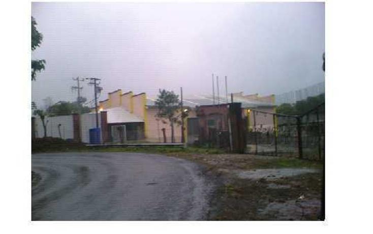 Foto de rancho en venta en kilometro 5.5. carretera el mojón hueytamalco , mojón, hueytamalco, puebla, 328583 No. 04