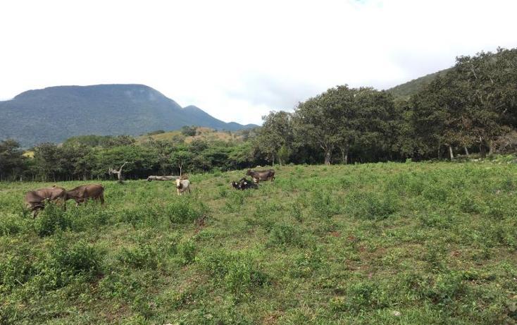 Foto de terreno comercial en venta en kilometro 6 , gabriel esquinca, san fernando, chiapas, 1496941 No. 23