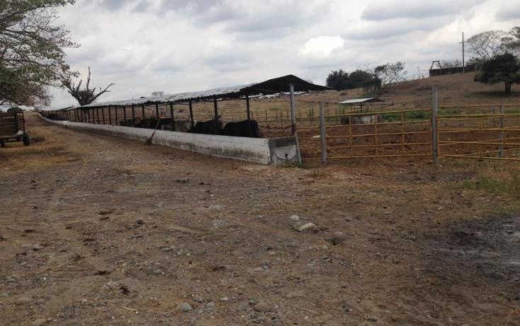 Foto de rancho en venta en carretera federal veracruz - cordoba kilometro 62, la tinaja, cotaxtla, veracruz de ignacio de la llave, 1675688 No. 03