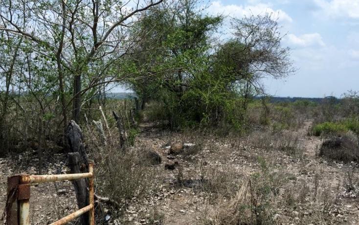 Foto de rancho en venta en  kilometro 62, la tinaja, cotaxtla, veracruz de ignacio de la llave, 1675704 No. 02
