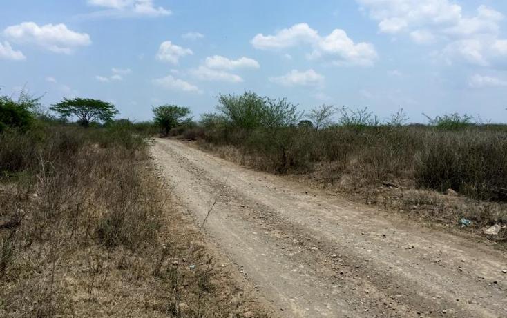 Foto de rancho en venta en  kilometro 62, la tinaja, cotaxtla, veracruz de ignacio de la llave, 1675704 No. 04