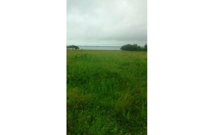 Foto de terreno habitacional en venta en  , kilómetro cien, tampico alto, veracruz de ignacio de la llave, 1296987 No. 04