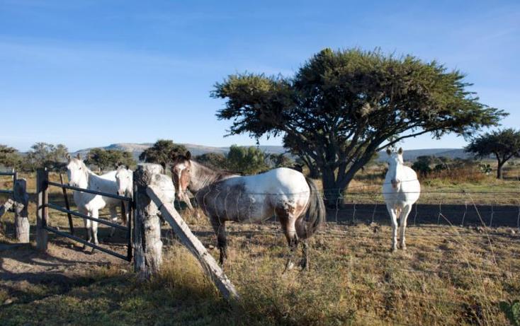 Foto de rancho en venta en king rancho en san miguel de allende 7, allende, san miguel de allende, guanajuato, 1547704 No. 17