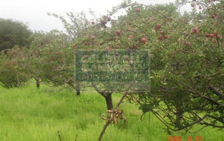Foto de rancho en venta en km 132 carretera cuauhtmocgmez farias, namiquipa, namiquipa, chihuahua, 283096 no 10