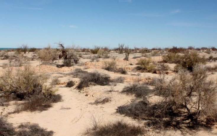 Foto de terreno comercial en venta en km 182 careterra meicalisan felipe, san felipe, mexicali, baja california norte, 1335959 no 21