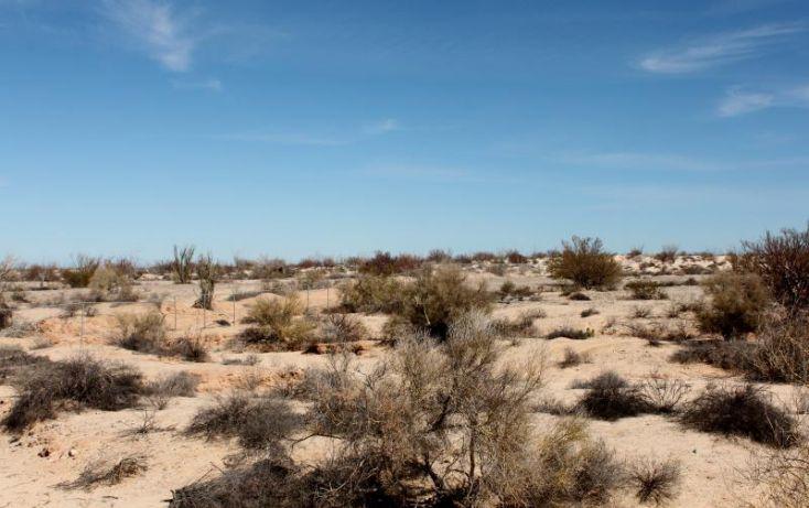Foto de terreno comercial en venta en km 182 careterra meicalisan felipe, san felipe, mexicali, baja california norte, 1335959 no 22