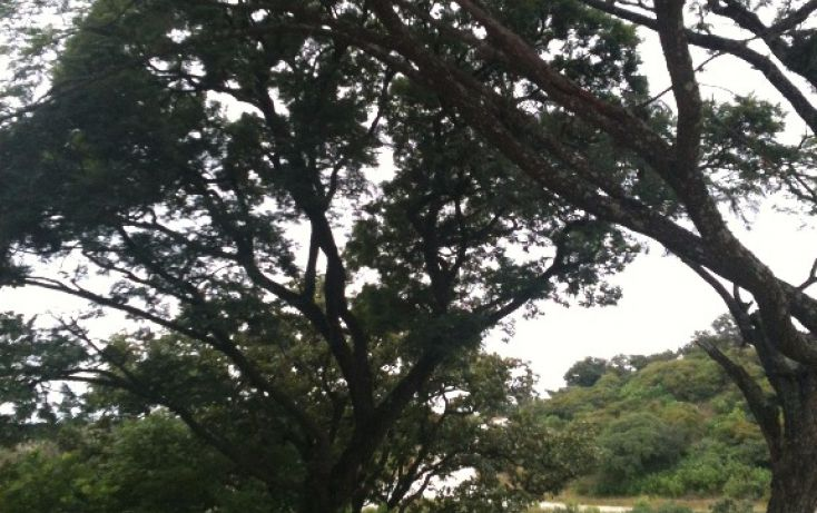 Foto de terreno habitacional en venta en km 26 carr guadalajara nogales, fracc el río habitat 1000, el arenal, lagos de moreno, jalisco, 1719726 no 06
