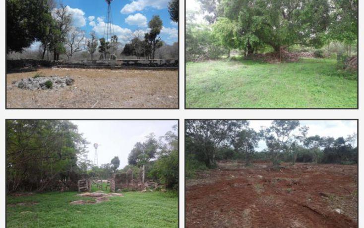Foto de terreno habitacional en venta en km 48 carretera, cacalchen, cacalchén, yucatán, 1992576 no 02
