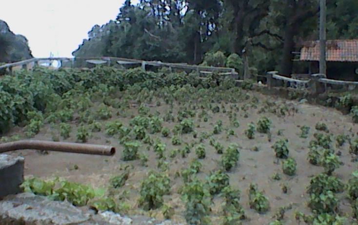 Foto de rancho en venta en km 54 12 carr vieja mexico 01, huitzilac, huitzilac, morelos, 630103 no 23