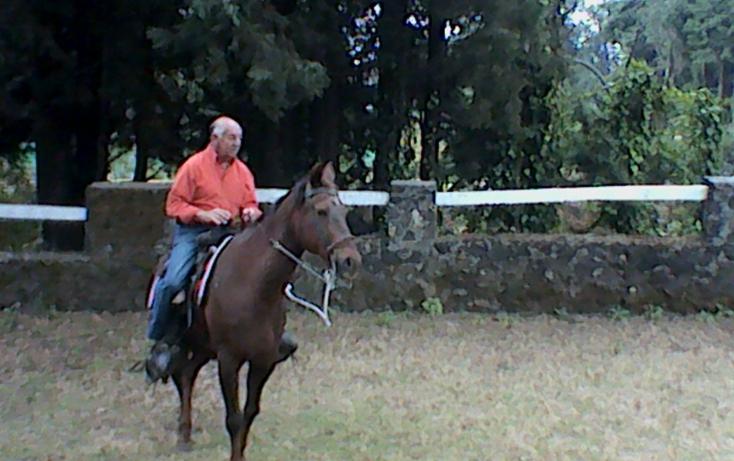 Foto de rancho en venta en km 54 12 carr vieja mexico 01, huitzilac, huitzilac, morelos, 630103 no 25