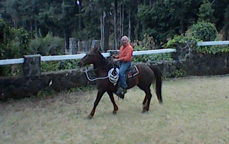 Foto de rancho en venta en km 54 12 carr vieja mexico 01, huitzilac, huitzilac, morelos, 630103 no 27