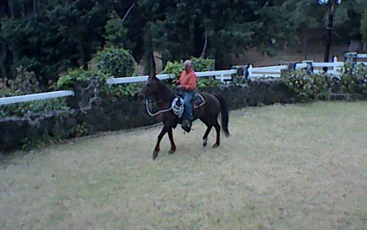 Foto de rancho en venta en km 54 12 carr vieja mexico 01, huitzilac, huitzilac, morelos, 630103 no 29