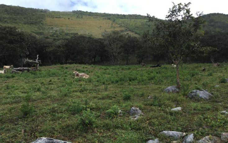Foto de terreno comercial en venta en km 6, gabriel esquinca, san fernando, chiapas, 1496941 no 11