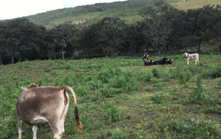 Foto de terreno comercial en venta en km 6, gabriel esquinca, san fernando, chiapas, 1496941 no 17