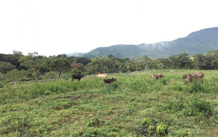 Foto de terreno comercial en venta en km 6, gabriel esquinca, san fernando, chiapas, 1496941 no 24