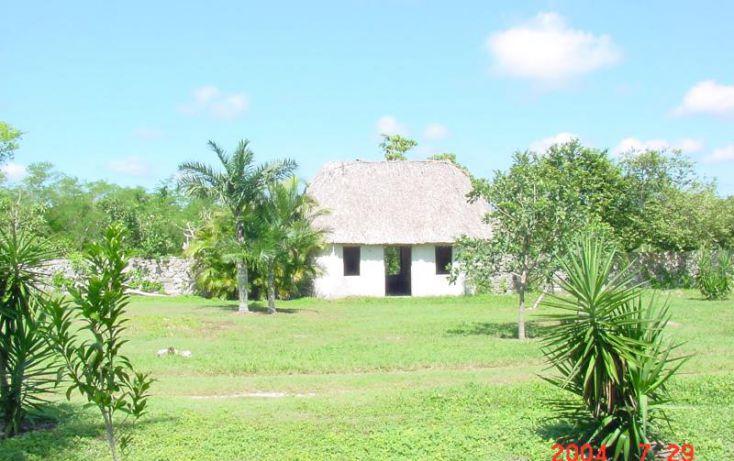 Foto de terreno habitacional en venta en km 76 carretera izamalmerida 1, izamal, izamal, yucatán, 968897 no 02