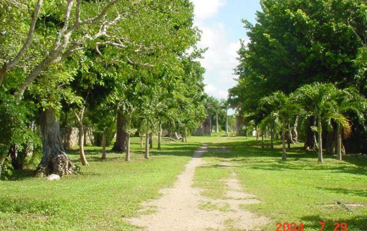 Foto de terreno habitacional en venta en km 76 carretera izamalmerida 1, izamal, izamal, yucatán, 968897 no 07