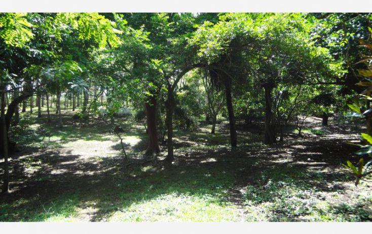 Foto de rancho en venta en km 8 carretera a tlalicoyan, la víbora o la reforma, tlalixcoyan, veracruz, 1412917 no 03