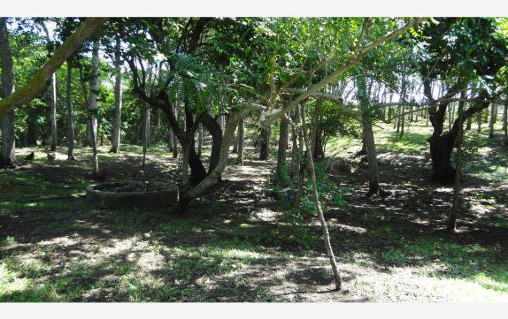 Foto de rancho en venta en km 8 carretera a tlalicoyan, la víbora o la reforma, tlalixcoyan, veracruz, 1412917 no 04