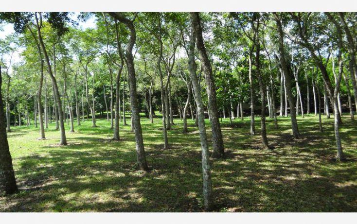 Foto de rancho en venta en km 8 carretera a tlalicoyan, la víbora o la reforma, tlalixcoyan, veracruz, 1412917 no 07